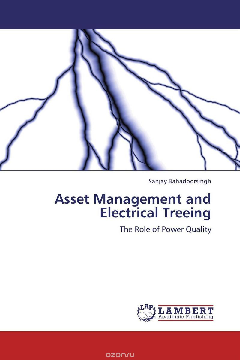 Asset Management and Electrical Treeing